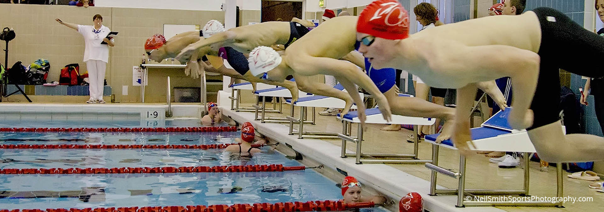 Swimmers diving in for a race